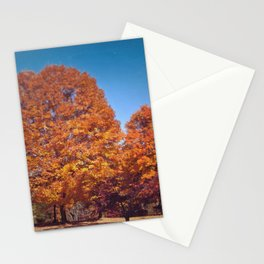 Fall Foliage  Stationery Cards