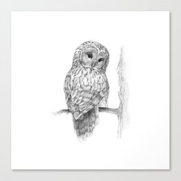 The Ural Owl Canvas Print