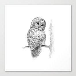 The Ural Owl Canvas Print