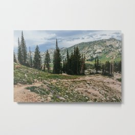 Wasatch Mountains, Utah Metal Print