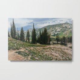 Wasatch Mountains, Utah Metal Print