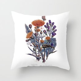 Sow Thistle flowers Old Illustration Throw Pillow