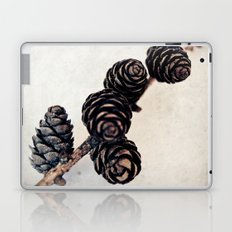 Cones Laptop & iPad Skin