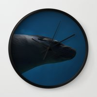 seal Wall Clocks featuring Seal I by jarjake