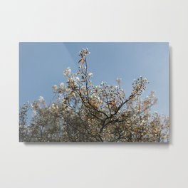 I see you in the sunshine - I know you're not gone Metal Print
