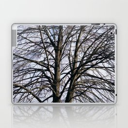 Stained Glass Tree Laptop & iPad Skin