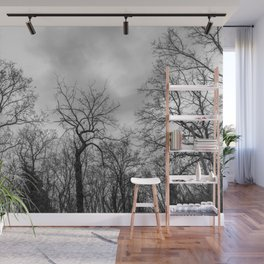 Coven of trees Wall Mural