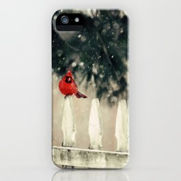 Snowy Day Cardinal iPhone Case