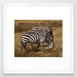 Three Zees Framed Art Print
