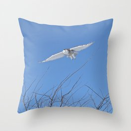 Snowy Owl Soaring High Throw Pillow