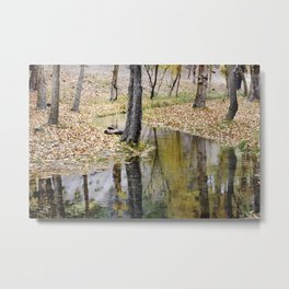 Cristal river. At the mountains. Metal Print