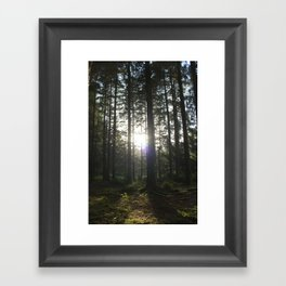 They Grow Tall Here Framed Art Print