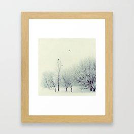 Winter Birds - Winter Baltic Sea Serie Framed Art Print