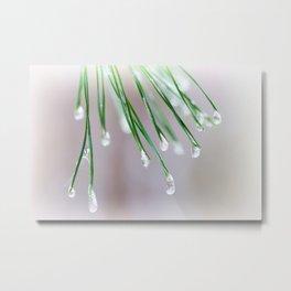 Ice drops Metal Print