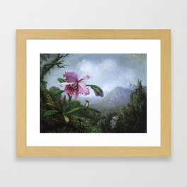Hummingbird & Orchid Framed Art Print