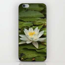 Lily Pads and Blossoms on a Michigan Pond iPhone Skin