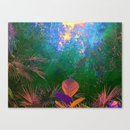 Sunlight in the Enchanted Forest Canvas Print