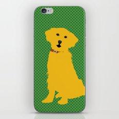Golden Retriever  Dog iPhone & iPod Skin
