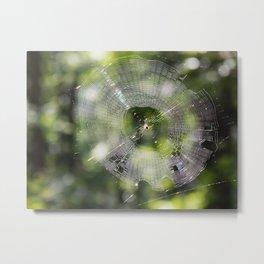 Web of wonder Metal Print