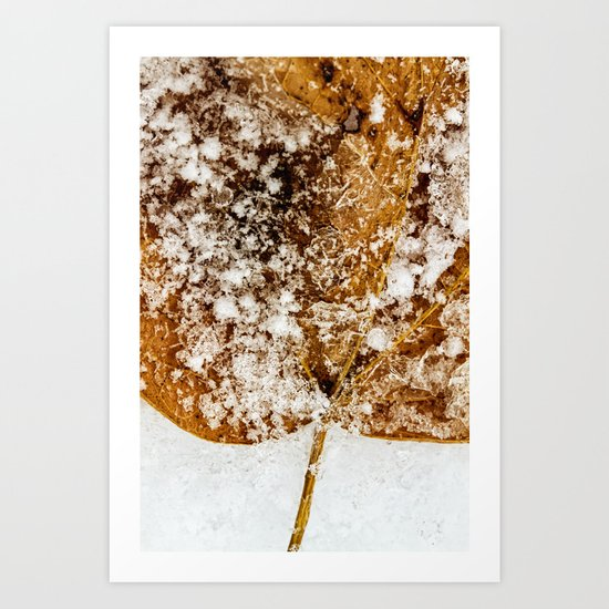 a little bit icy, a little bit snowy Art Print