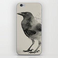 Raven Sky iPhone & iPod Skin