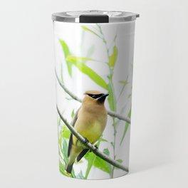 Cedar Waxwing Travel Mug