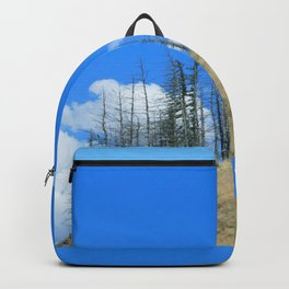 At The End Of The World Backpack