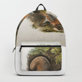 Canis (Vulpes) Virginianus,Grey Fox Backpack