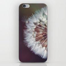 Dreamers and Wishers iPhone & iPod Skin
