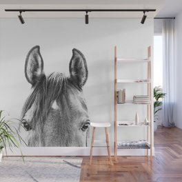 peekaboo horse, bw horse print, horse photo, equestrian print, equestrian photo, equestrian decor Wall Mural