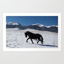 Friesian in the snow Art Print