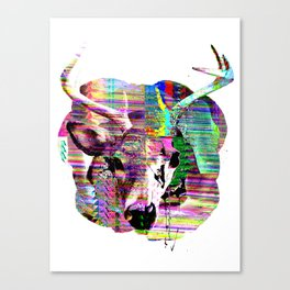 Half n Half Canvas Print