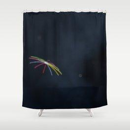 #29 Shower Curtain