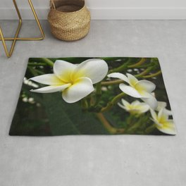 Closeup Frangipani with Natural Garden Background Rug