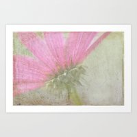 botanical Art Prints featuring Botanical  by STEPHANIE MCARTHUR PHOTOGRAPHY