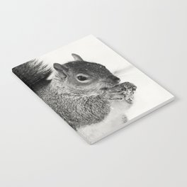 Squirrel Animal Photography Notebook