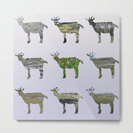 Ode to the Burren goats Metal Print