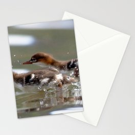 Watercolor Bird, Common Merganser 06, Chicks, Mjoifjordur, Iceland Stationery Cards