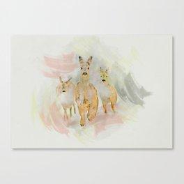 Doe Canvas Print