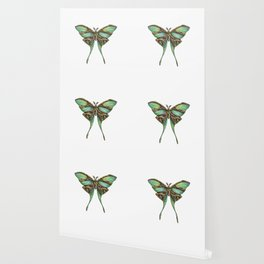 Steampunk Green Luna Moth Wallpaper