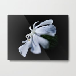 Dragonflower Metal Print