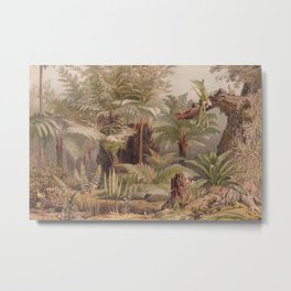 Farne I - Tropical Plants Metal Print