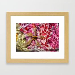 Rockstar of Spring Framed Art Print