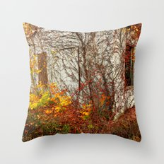 Somewhere in Rhode Island - Abandoned Mill 002 Throw Pillow