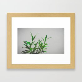 No Diggity Framed Art Print