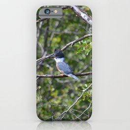 Bad Hair Day! iPhone Case