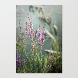 Lakeside Colors Canvas Print