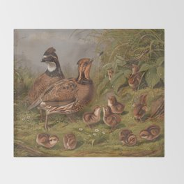 Vintage Quails & Their Chicks Illustration (1867) Throw Blanket