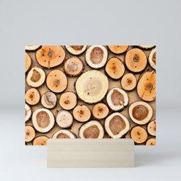 Wooden Disks Composition Mini Art Print