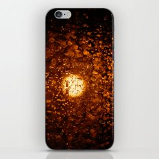 Screen iPhone & iPod Skin
